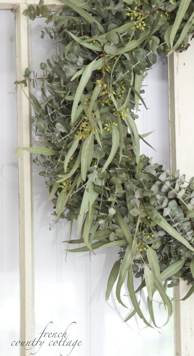 FRENCH COUNTRY COTTAGE: Fresh Eucalyptus Wreath: French Country Cottage, Wreaths For The Seasons, Spring Wreaths, Eucalyptus Wreaths