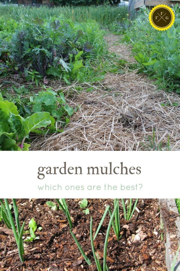 what are the best garden mulches?