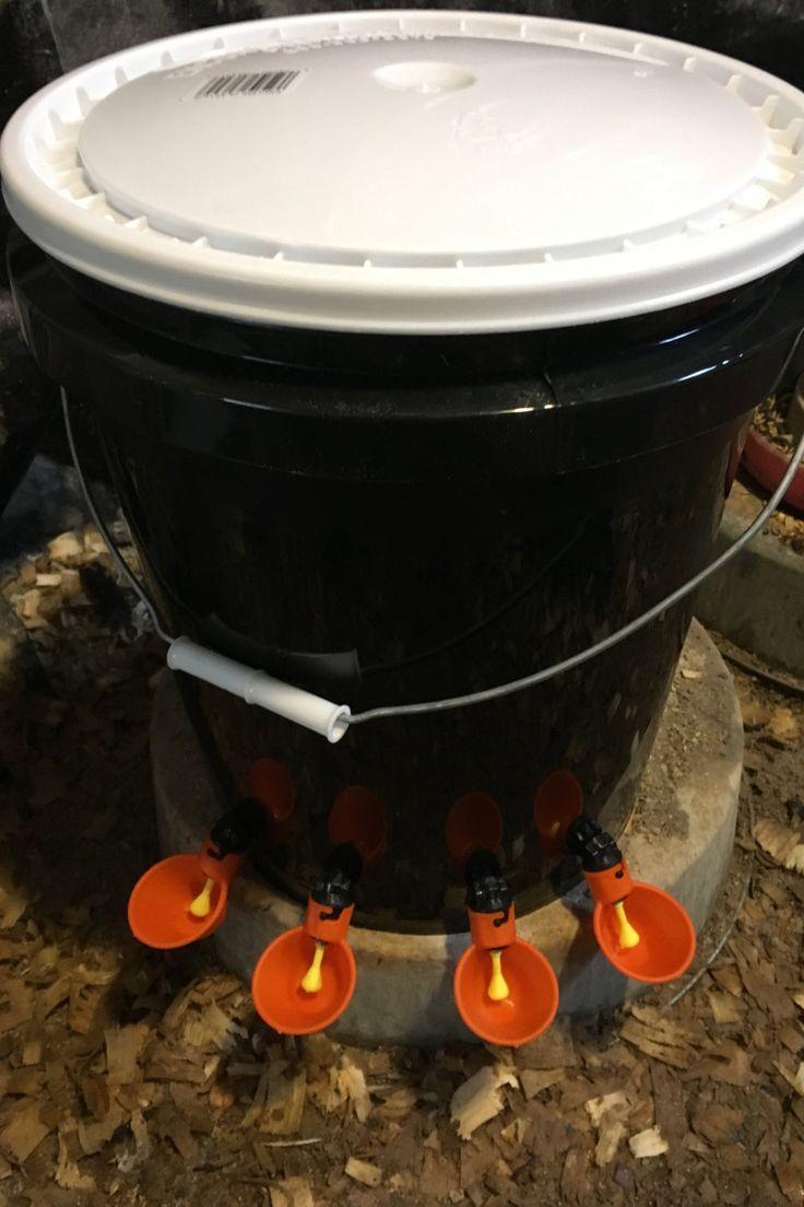 AUTOMATIC CHICKEN WATERER Bucket Water Cup by HenFeederBeeKeeper