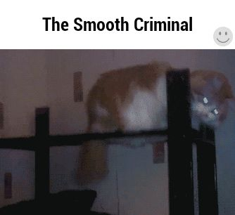 #criminal