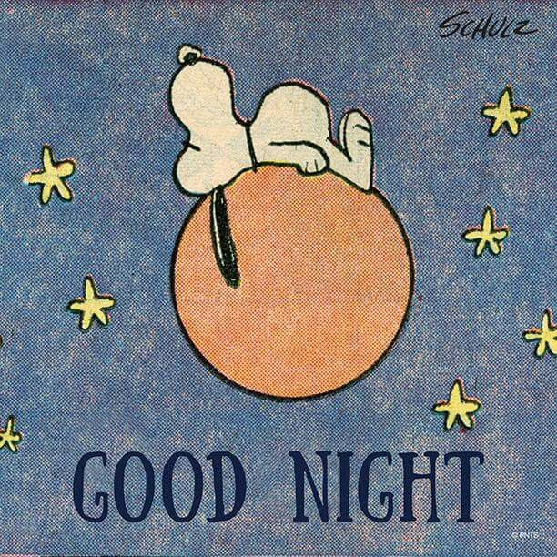 211 Best Peanuts Gang Goodnight Images On Pinterest