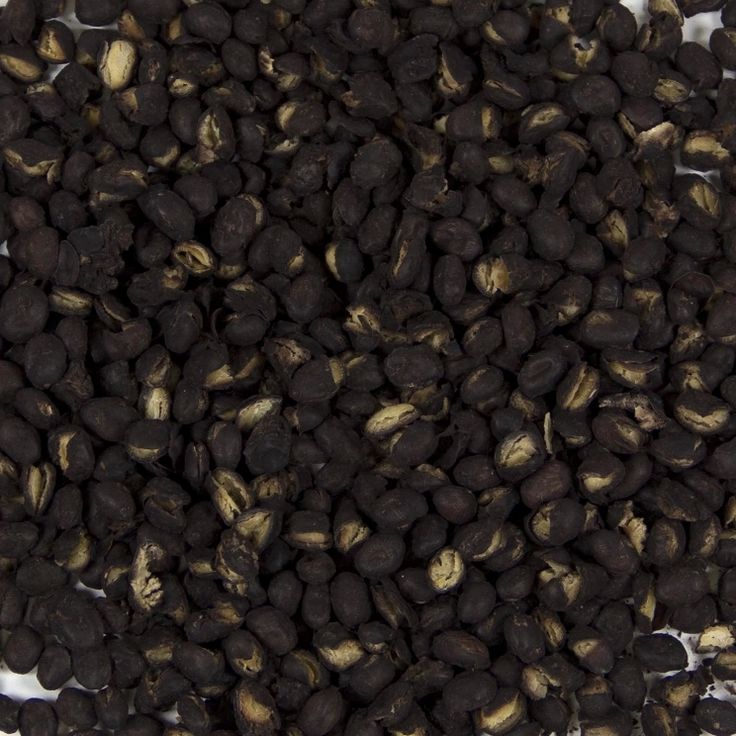 Black beans sometimes called turtle beans are an