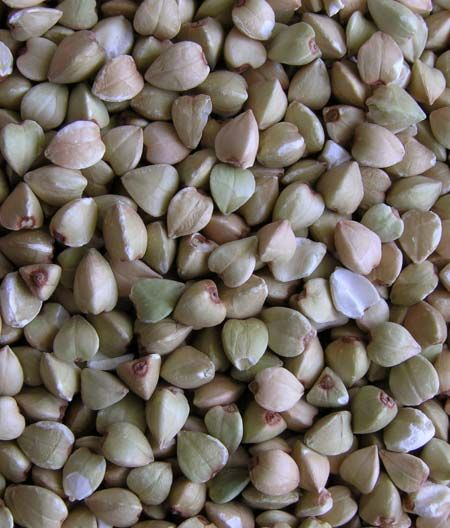 Chicci di grano saraceno