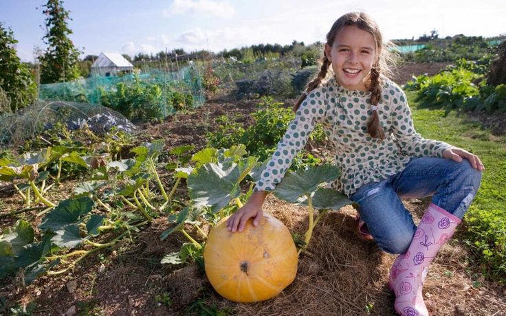 Once the school term is under way, routines take over and families disperse. How wonderful, then, to reconvene at the weekend for a bit of fun. Here are our favourite family weekend breaks around England, including relaxing hotel stays, city breaks teeming with cultural wonders, and ways to really muck in on the farm.