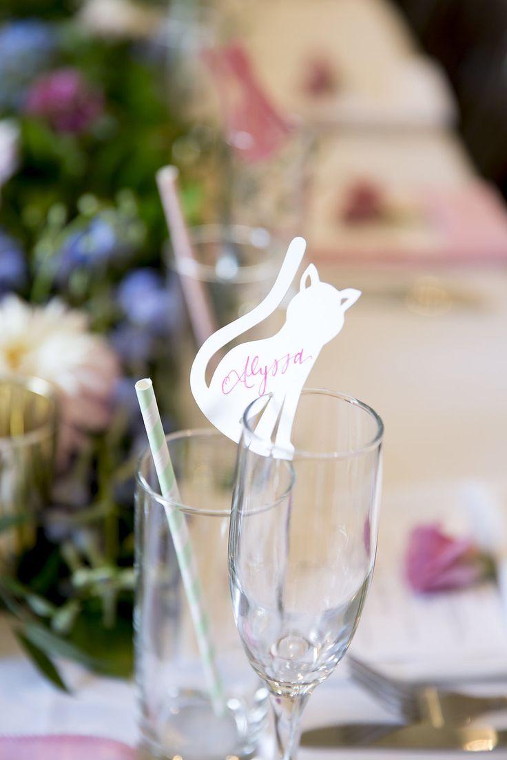 grumpy cat wedding invitations%0A Kitty Themed Bridal Shower