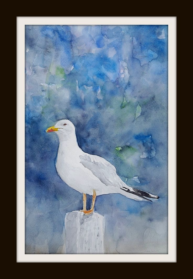 Seagull 3 ARTIST LORNA PAULS Watercolours on 1/2 Sheet 300g Bockingford Paper Done March 2017