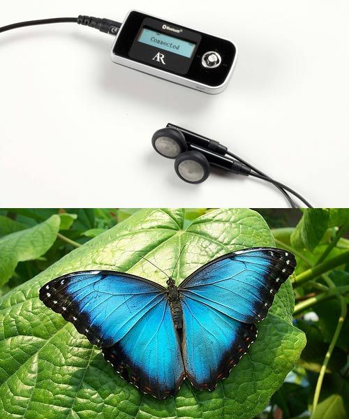 biomimicry in energy technologies These examples of biomimicry in action cover robotics, architecture, transportation and more  13 technologies inspired by nature 1 of 14  here are 13 novel technologies inspired by the.