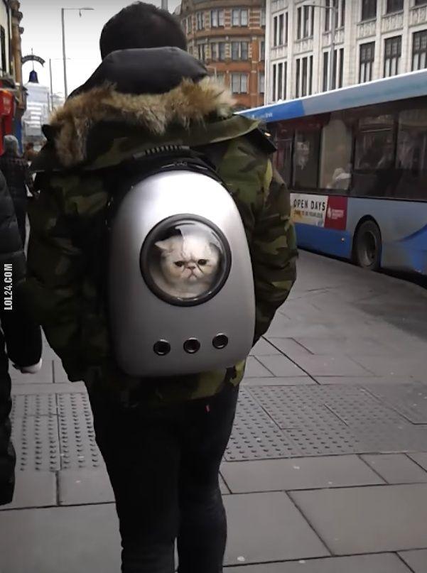 Kosmiczny plecak do przewożenia kota #plecak #kot #przewożenie