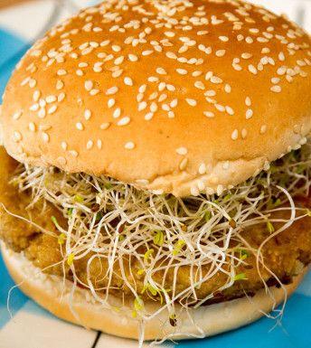 Burger aux lentilles : L'Anarchie Culinaire selon Bob le Chef  *fait . je n'ai pas trop aimé, il s'est tout brisé.