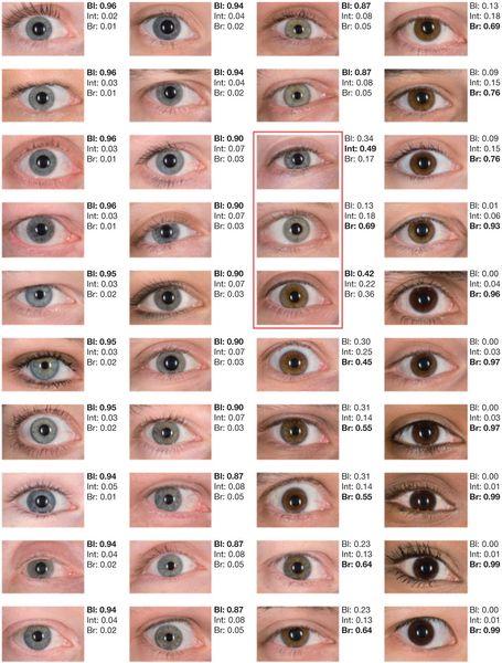 25+ best ideas about Eye color on Pinterest   Pretty eyes ...
