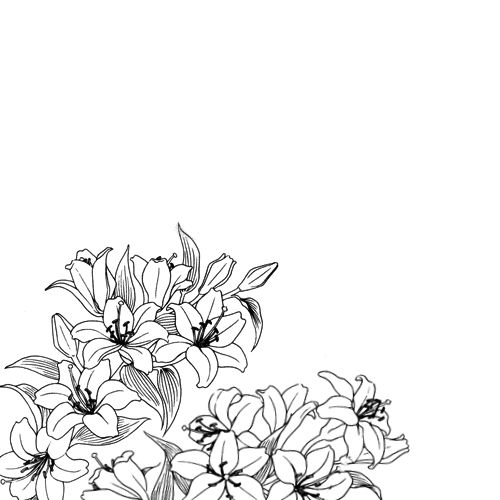 Flower Line Drawing Tumblr : Drawing tumblr flowers pixshark images