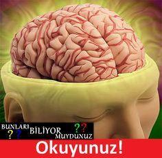 Beyninizi daha iyi çalıştırmanın yolları.