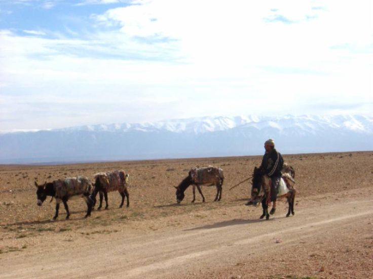Morocco, Midelt region, High Atlas Mountains in distance