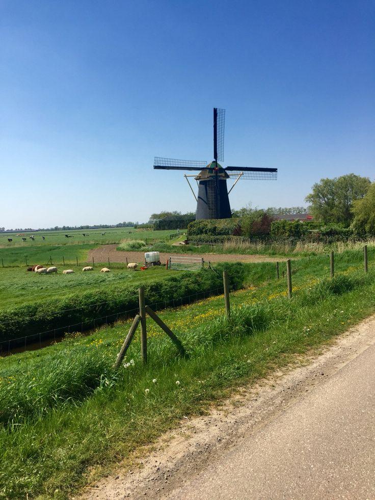 Maasdam, Netherlands
