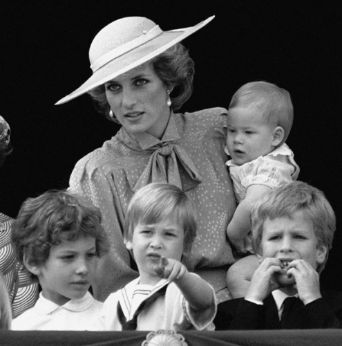 25+ Best Royal Babies Ideas On Pinterest