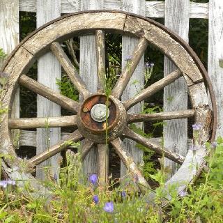 Wheel.