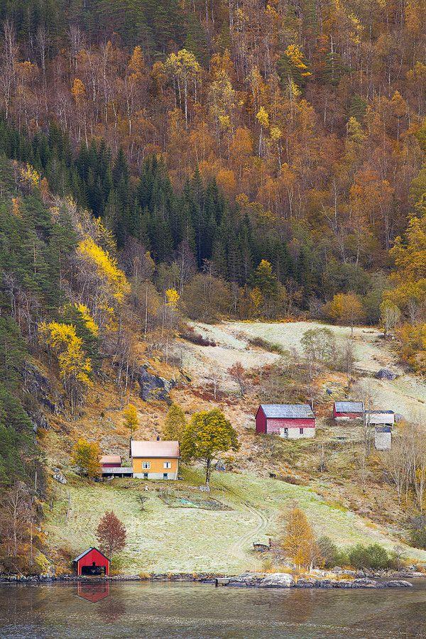 Norwegian Farm by Tord Andre Oen