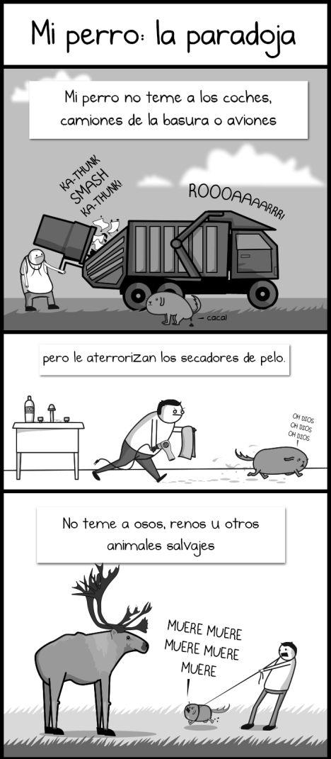 Mi perro: La Paradoja. http://cienciaaldia.wordpress.com/2013/04/10/mi-perro-la-paradoja/