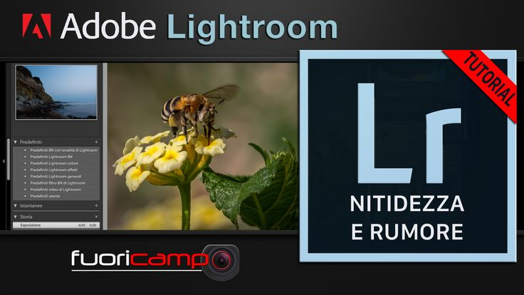 Tutorial Lightroom - CC #8 NITIDEZZA E RUMORE La nitidezza è una qualità fondamentale in una foto. Purtroppo, per ottenerla, molto deve essere fatto in fase di scatto, utilizzando buoni obiettivi, effettuando una messa a fuoco accurata e impostando un tempo di scatto tale da evitare il micromosso.Una volta giunti in fase di post-produzione, non è possibile correggere errori di messa a fuoco, né ovviamente modificare il tempo di scatto, ma la foto può comunque essere migliorata.