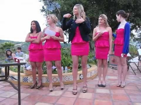 The best bridesmaids roasting speech!