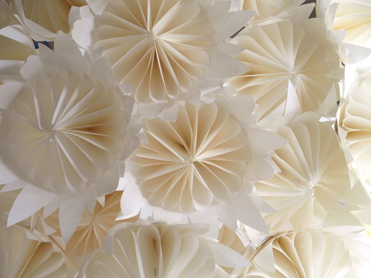 Pure White Paper Protea Project - Freshly Found