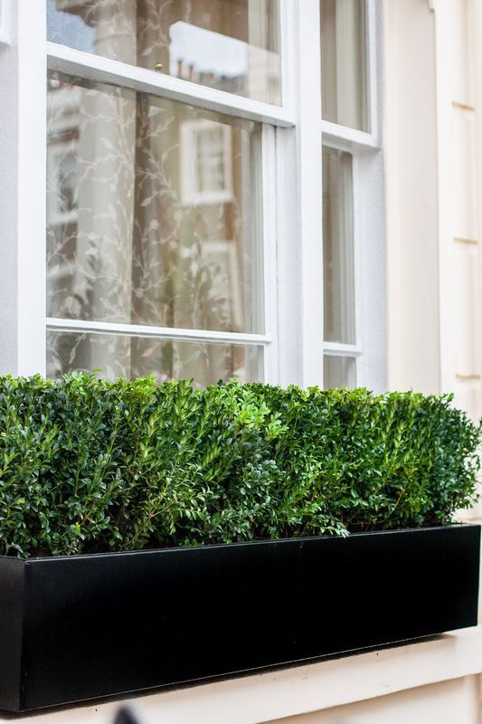 window boxes | Custom window boxes bespoke metal planters London