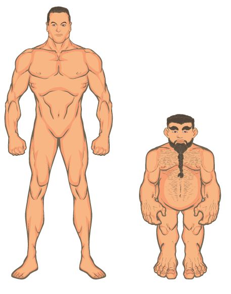 Mas male midget anatomy soft
