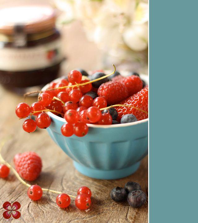 frutas-silvestres-leticia-massula-para-cozinha-da-matilde