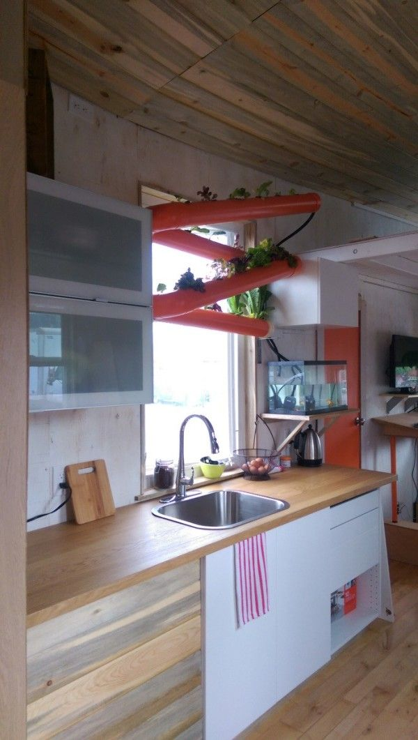 Tiny house kitchen with hydroponic garden over the sink, attached to fish  tank.