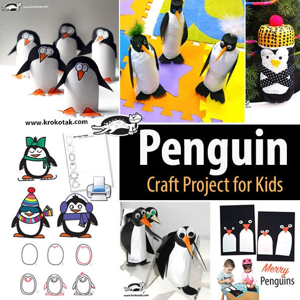 17 best images about toilet paper kids craft on pinterest for Penguin project