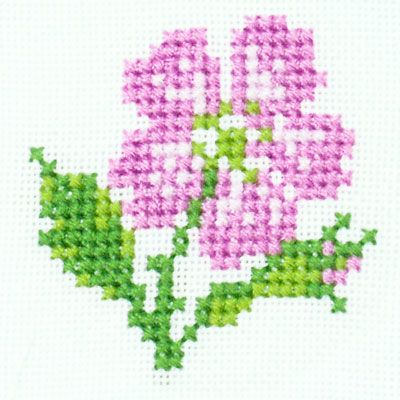 Small Dog Rose Free Chart