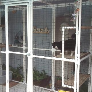 Catio : brilliant (but maybe bigger and PVC painted [non-toxic of course] to camouflage a bit)