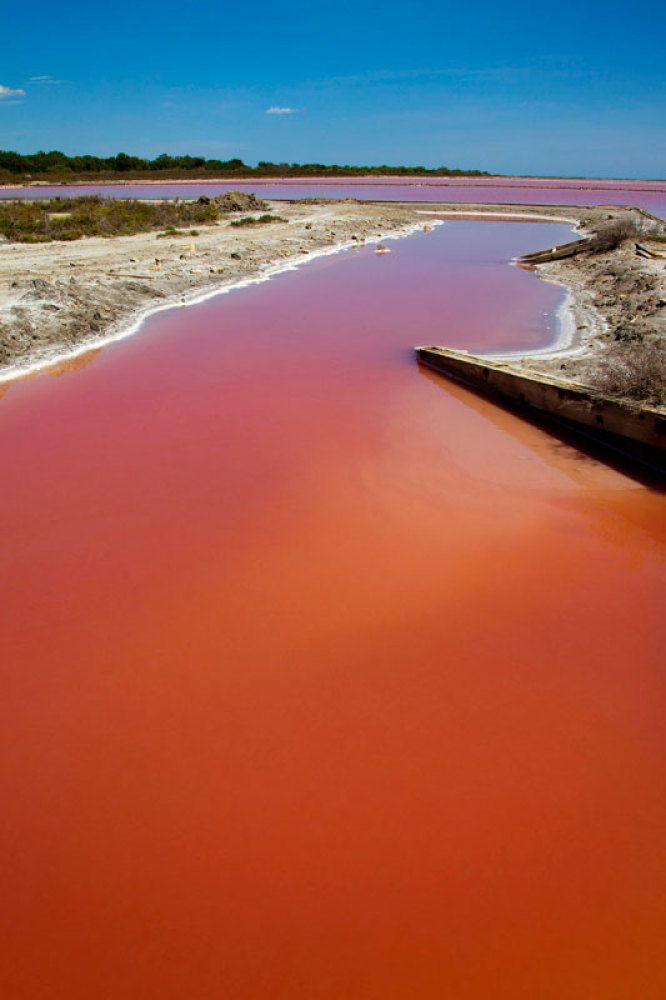 Blood Red Lake In South Of France Caused By High Salt Concentration (PICTURES)