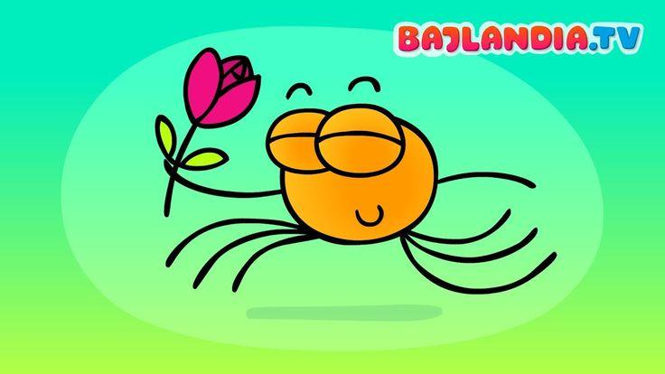 Maluśki pajączek - Piosenki dla dzieci Bajlandia tv - ZESTAW piosenek
