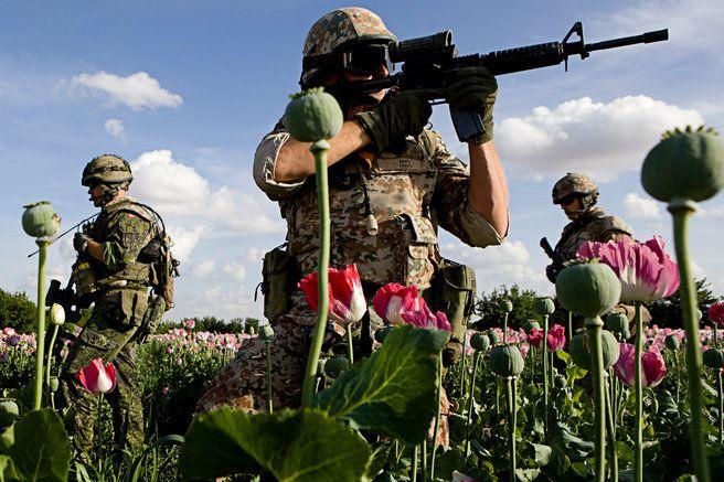 Soldater skal skrive deres sidste vilje inden kamp | Kristeligt Dagblad