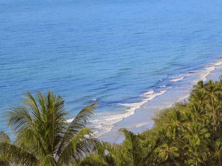 Azure blue seas and palm lined golden beaches. What else do you want? #portdouglas