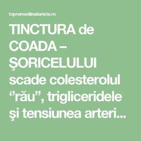 TINCTURA de COADA – ŞORICELULUI scade colesterolul ''rău'', trigliceridele şi tensiunea arterială - Top Remedii Naturiste