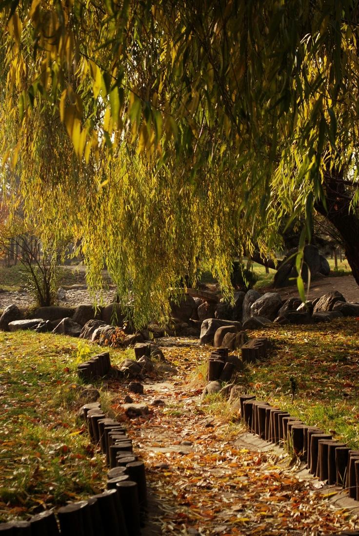 Herastrau Park - Bucharest, Romania