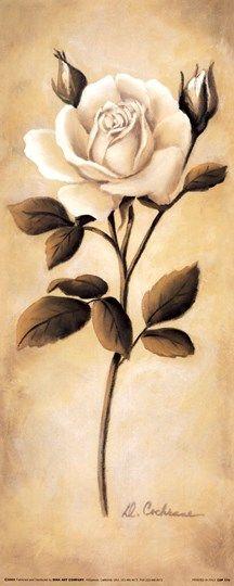 White Roses II Fine-Art Print by Diane Cochrane at UrbanLoftArt.com