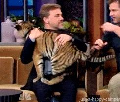 Christopher Waltz cuddling a tiger because he is awesome.
