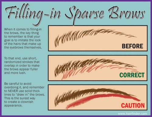 Eyebrow info and how to fill in your brows