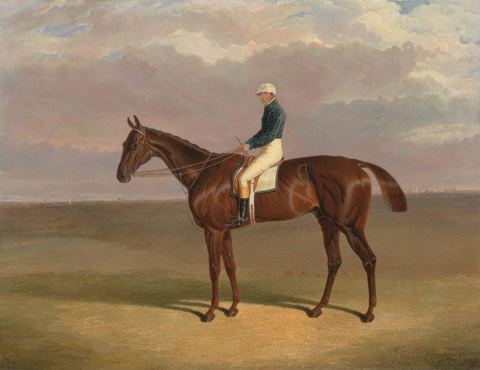 Margrave with James Robinson Up by John Frederick Herring | Art Posters