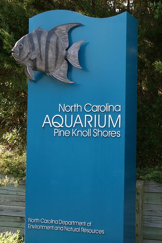 Aquarium at Pine Knoll Shores, #Pine Knoll Shores, #Crystal Coast