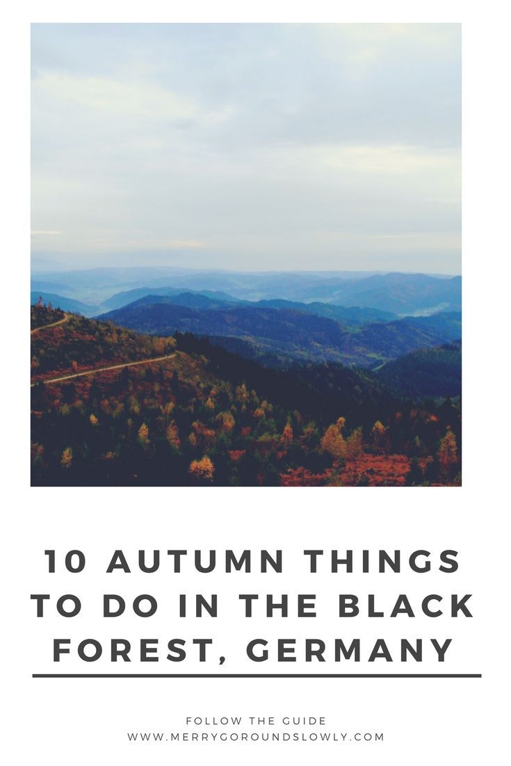 Discover autumn in Black forest - fireplaces, long walks and sweet cakes.