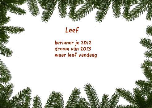 Leef herinner je 2012 droom van 2013 maar leef vandaag Ingezonden door: Lieverd