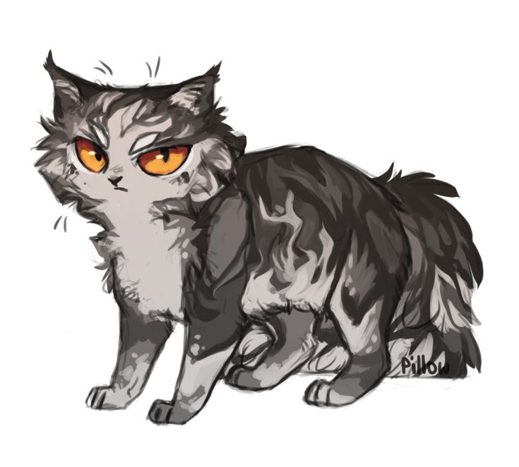 4664 Best Warrior Cats Images On Pinterest