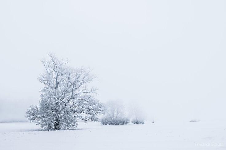 Morning mist by friedrich schütz