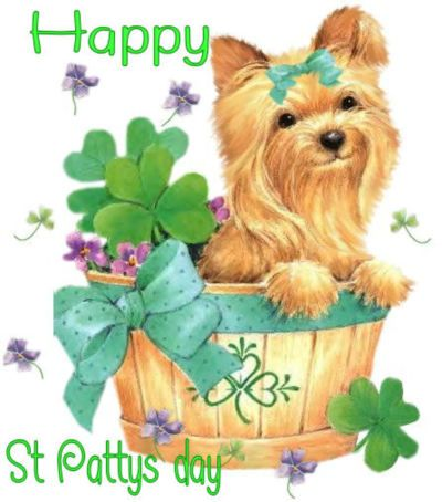 17 Best images about Happy St. Patrick's Day on Pinterest | Irish ...