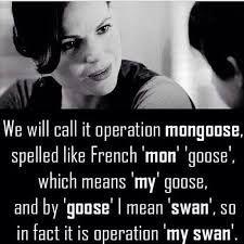 Afbeeldingsresultaat voor operation mongoose swan queen