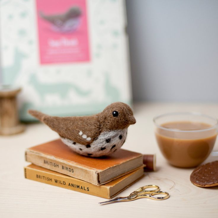 Song Thrush Needle Felting Kit. Craft Kit. Needle Felted Animal. Felting Starter Kit. Felt Bird. Felting Tutorial. How to Needle Felt. by HawthornHandmade on Etsy https://www.etsy.com/listing/160581280/song-thrush-needle-felting-kit-craft-kit